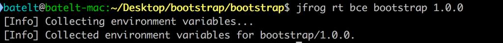 npm bootstrap